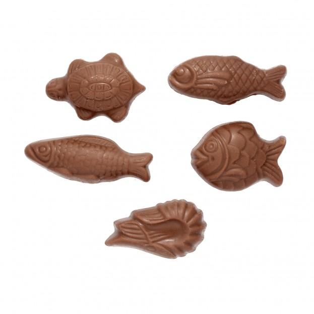 Boite Sardine Garnie de Friture Chocolat Lait 100g